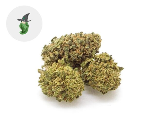 Amnesia Fleur CBD 24% Indoor - Weedzard
