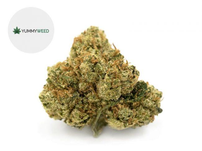 Og Kush Fleur CBD 11% Indoor - Yummyweed
